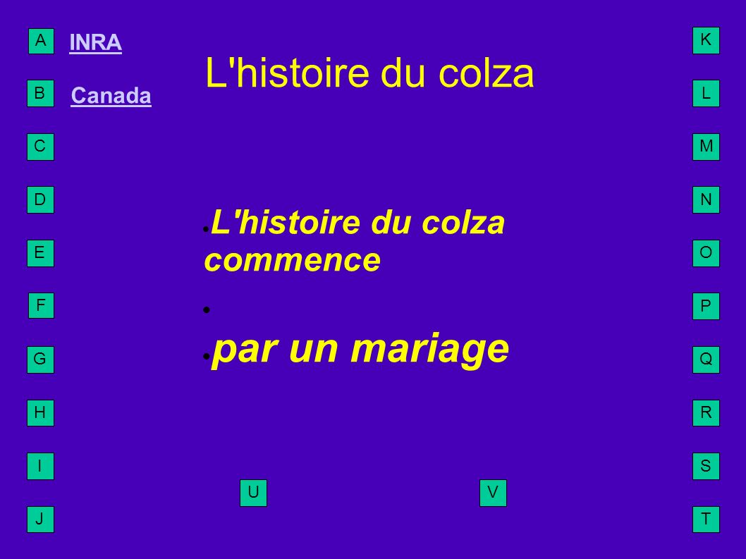 A B C D E F G H I J L M N O P Q R S T U INRA Canada K V L'histoire du colza L'histoire du colza commence par un mariage