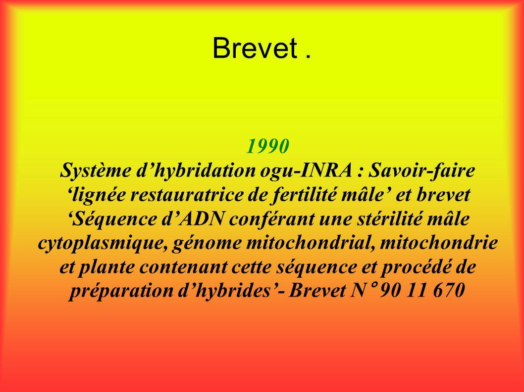 Brevet. 1990 Système dhybridation ogu-INRA : Savoir-faire lignée restauratrice de fertilité mâle et brevet Séquence dADN conférant une stérilité mâle