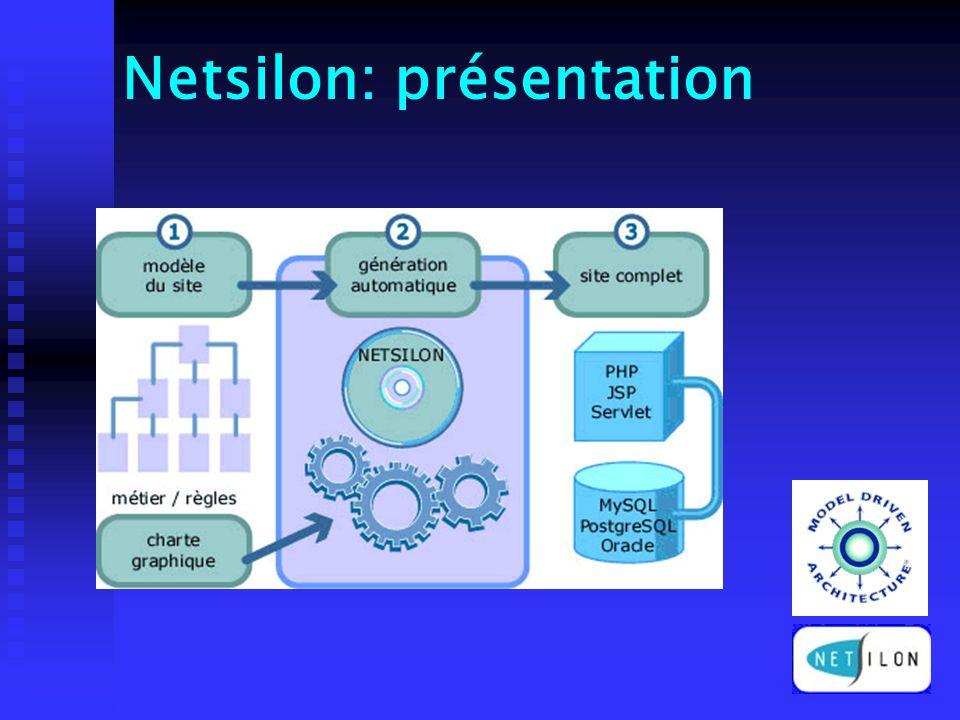 Netsilon: présentation
