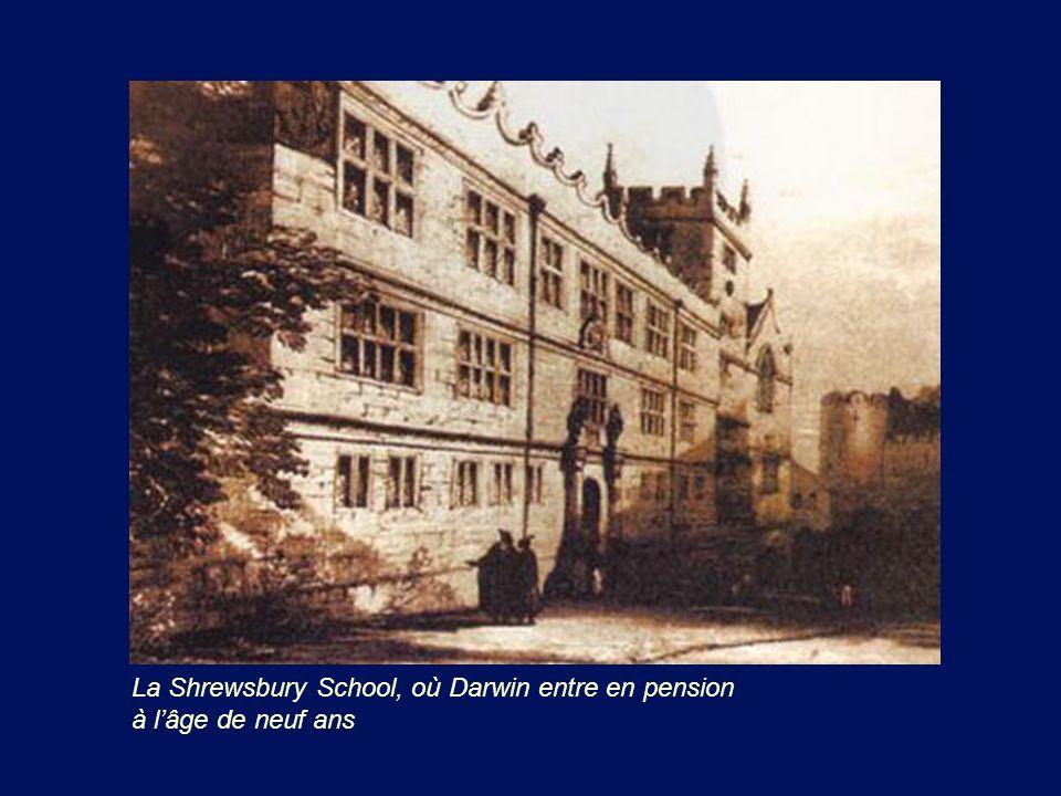La Shrewsbury School, où Darwin entre en pension à lâge de neuf ans