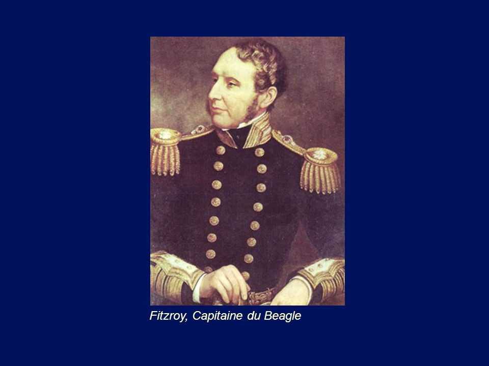 Fitzroy, Capitaine du Beagle