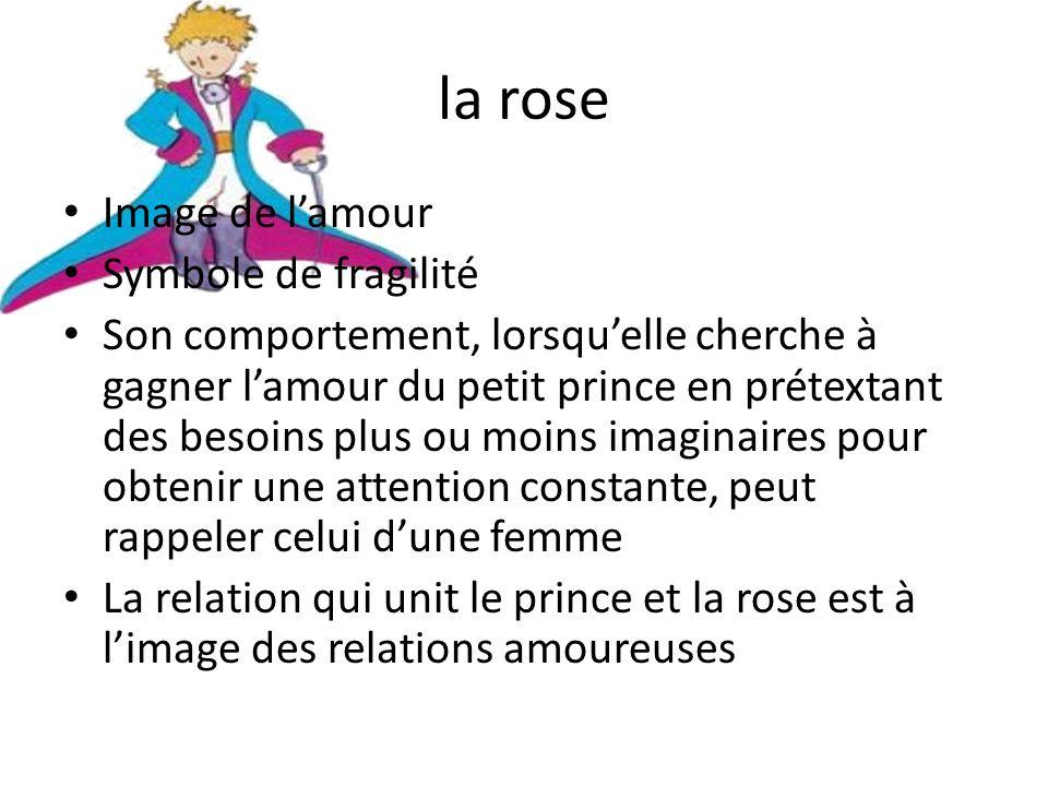 la rose Image de lamour Symbole de fragilité Son comportement, lorsquelle cherche à gagner lamour du petit prince en prétextant des besoins plus ou mo