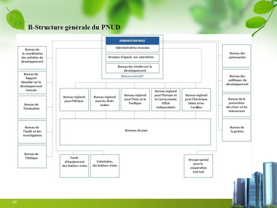 12 B-Structure générale du PNUD