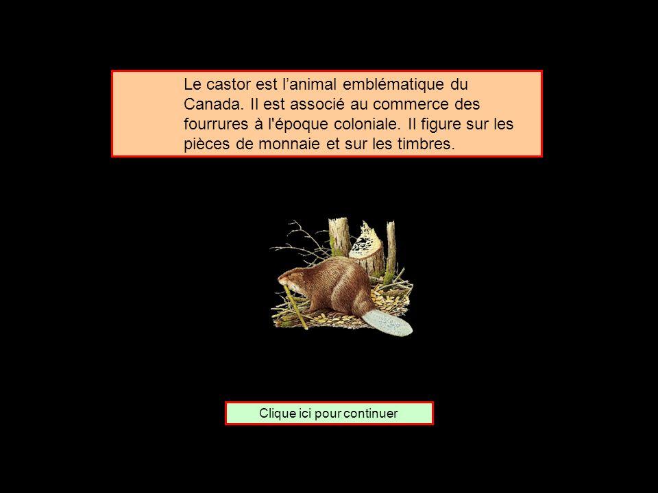 De quel pays le castor est-il lemblème ? Les États-unis Le Canada La Norvège