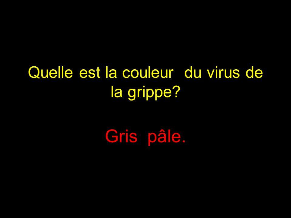 Quelle est la couleur du virus de la grippe? Gris pâle.