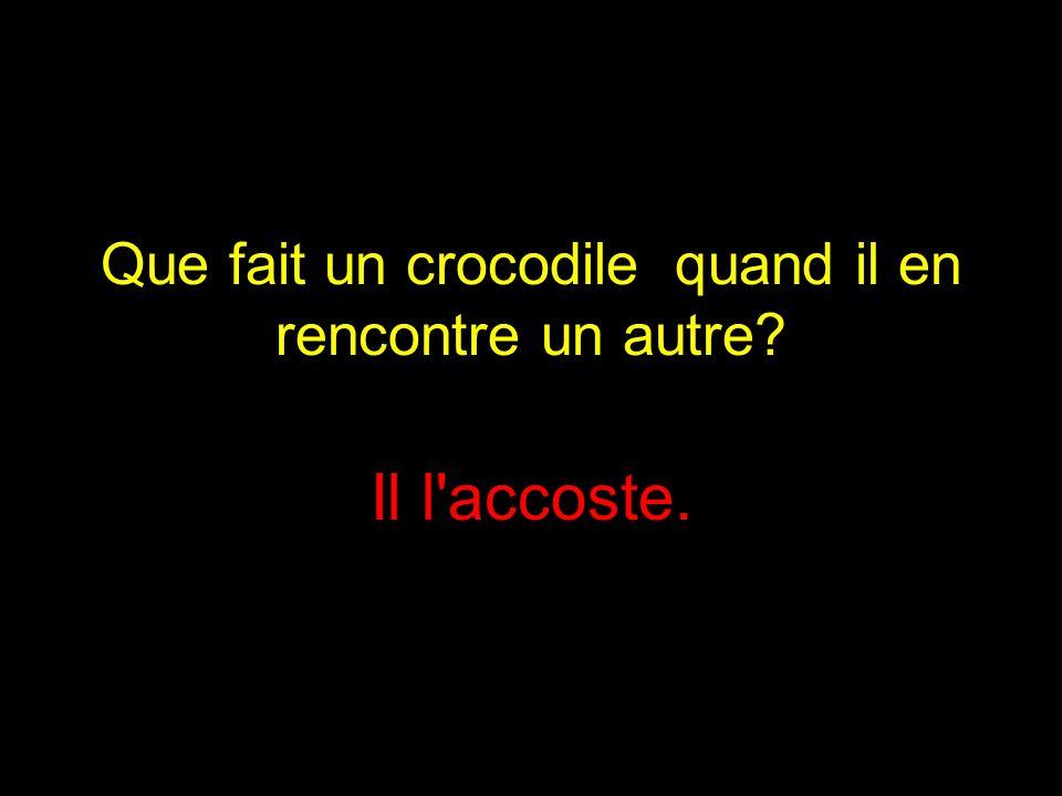 Que fait un crocodile quand il en rencontre un autre? Il l accoste.