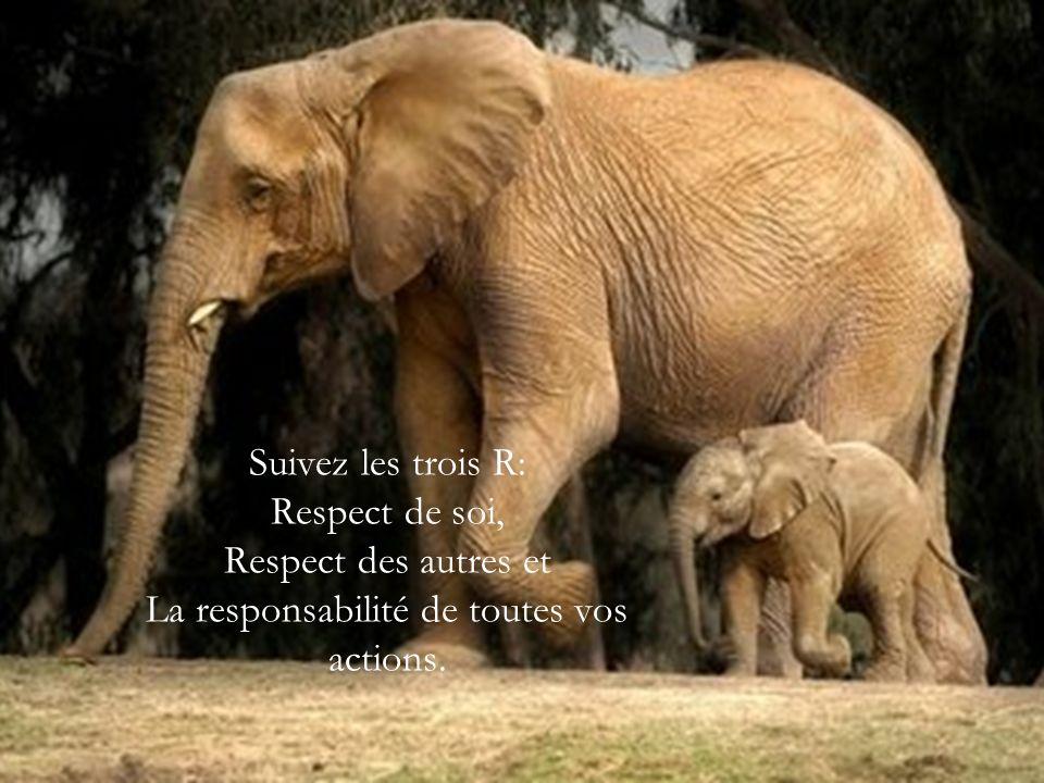 Suivez les trois R: Respect de soi, Respect des autres et La responsabilité de toutes vos actions.