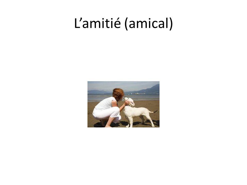 Lamitié (amical)