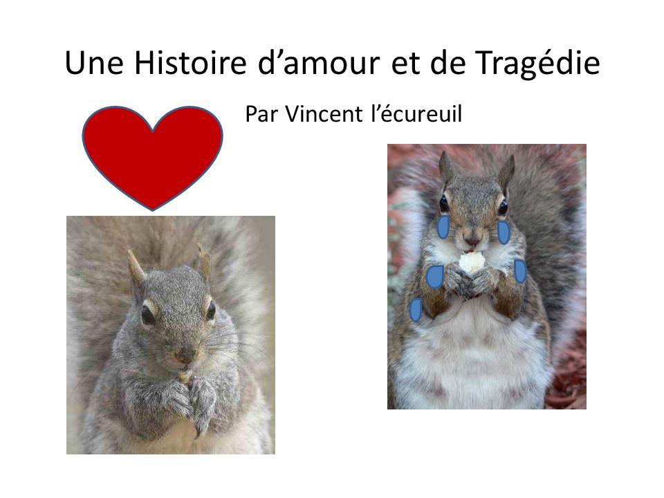 Bonjour, je suis Vincent et je suis un écureuil.Ce soir, je vais à la discothèque.