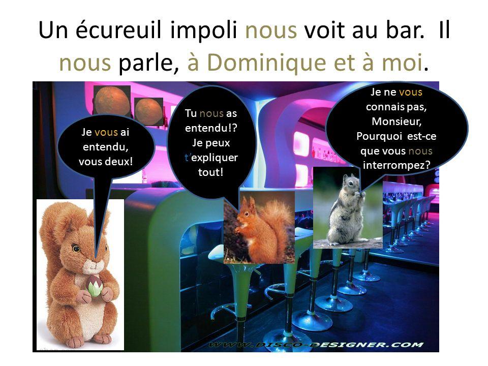 Un écureuil impoli nous voit au bar.Il nous parle, à Dominique et à moi.
