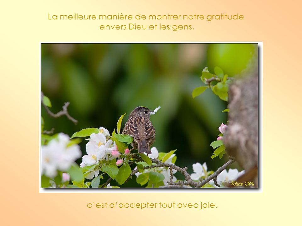 La meilleure manière de montrer notre gratitude envers Dieu et les gens, cest daccepter tout avec joie.