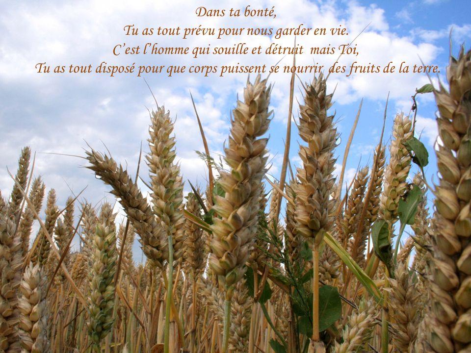 Vie du corps…mais aussi Vie de lâme.Ame créée à ton Image, Seigneur.