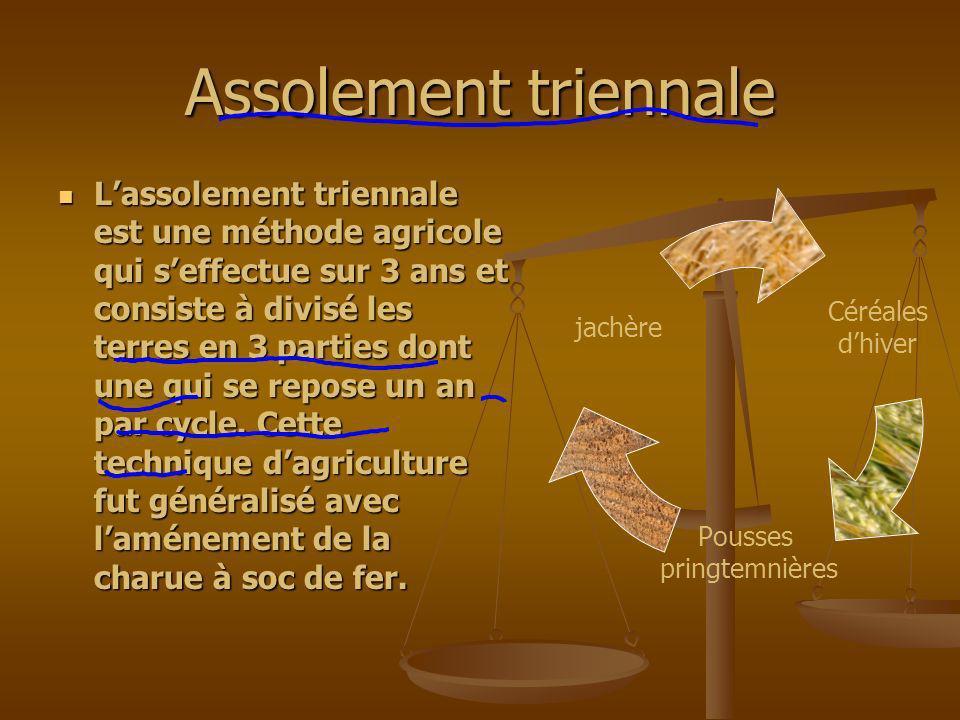 Assolement triennale Lassolement triennale est une méthode agricole qui seffectue sur 3 ans et consiste à divisé les terres en 3 parties dont une qui