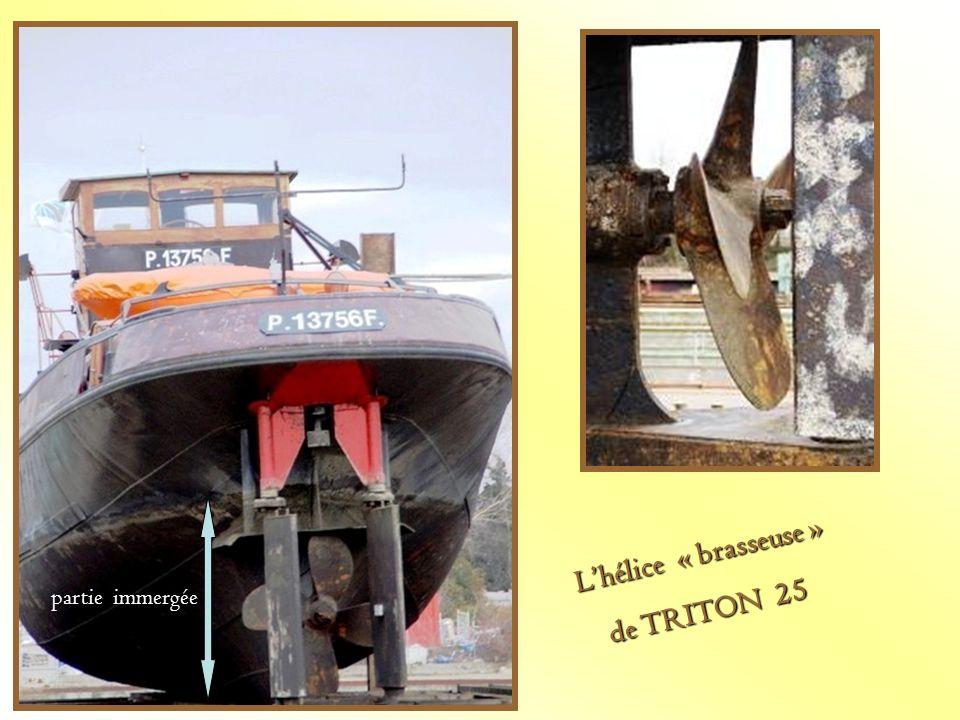 Lhélice « brasseuse » Lhélice « brasseuse » de TRITON 25 de TRITON 25 partie immergée