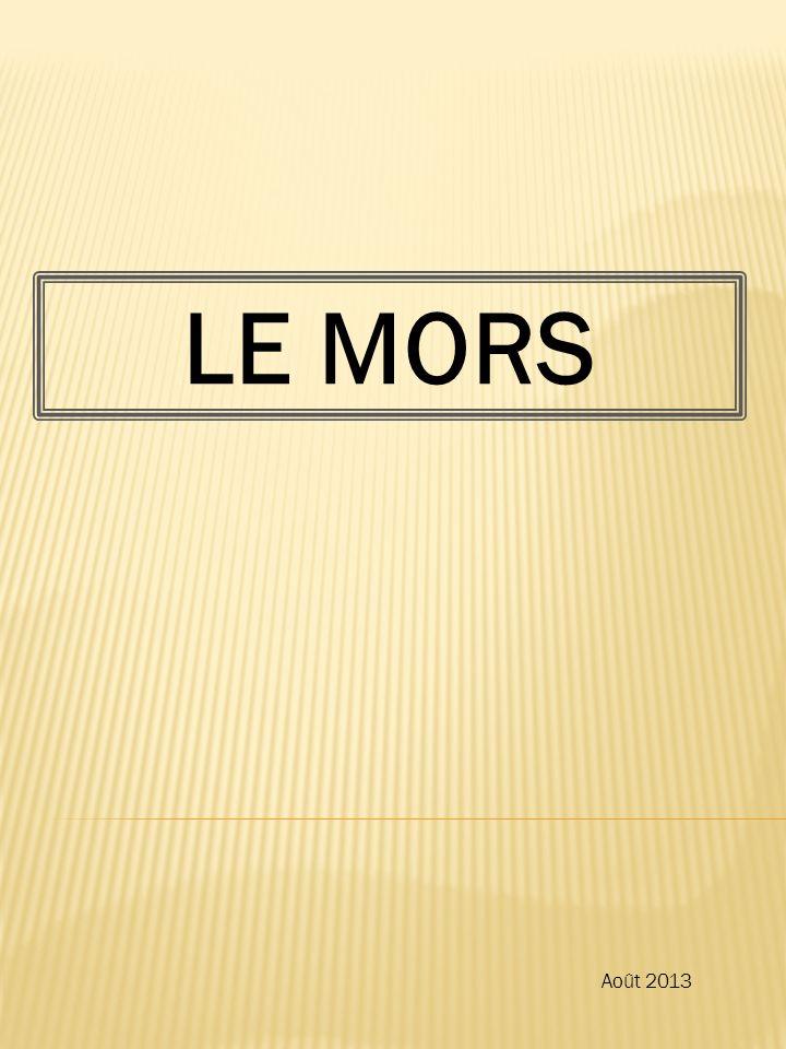 LE MORS Août 2013