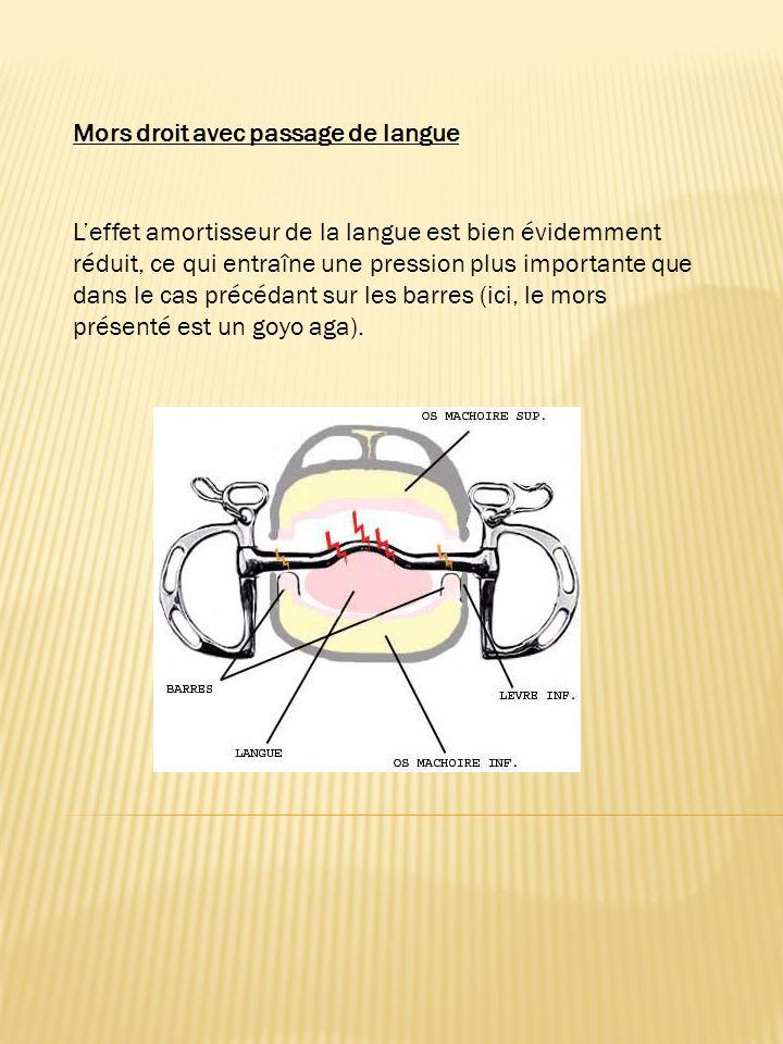 On leffet amortisseur de la langue (ici a été utilisé pour le schéma un aiguille en résine Flexi). Laction sur les barres est donc réduite. Mors droit