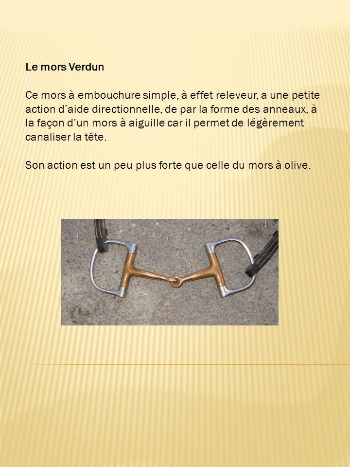Le mors Verdun Ce mors à embouchure simple, à effet releveur, a une petite action daide directionnelle, de par la forme des anneaux, à la façon dun mors à aiguille car il permet de légèrement canaliser la tête.