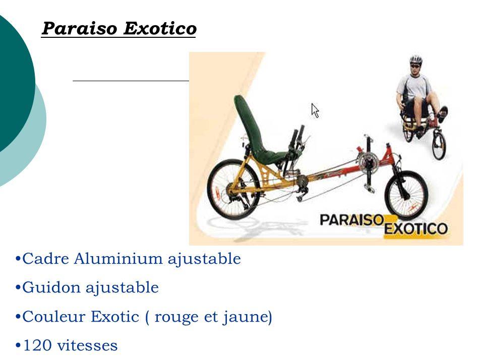 Cadre Aluminium ajustable Guidon ajustable Couleur Exotic ( rouge et jaune) 120 vitesses Paraiso Exotico