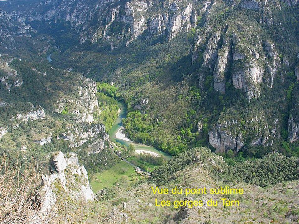 Pilier P2 245m au bord du Tarn premier sur la droite de la photo
