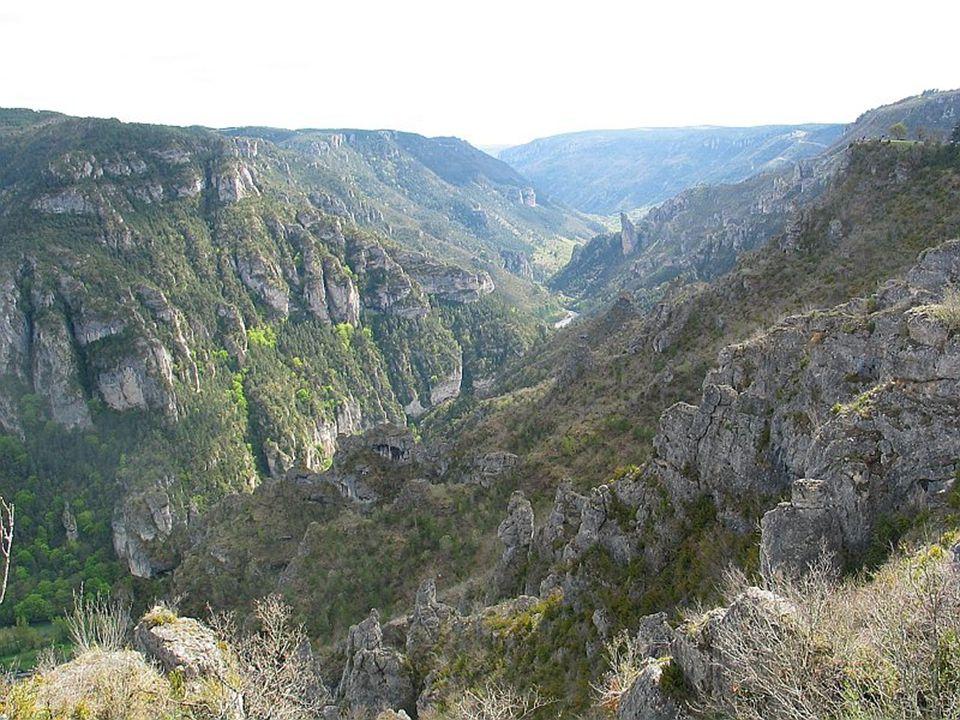 Gorges du Tarn Vue du Point Sublime