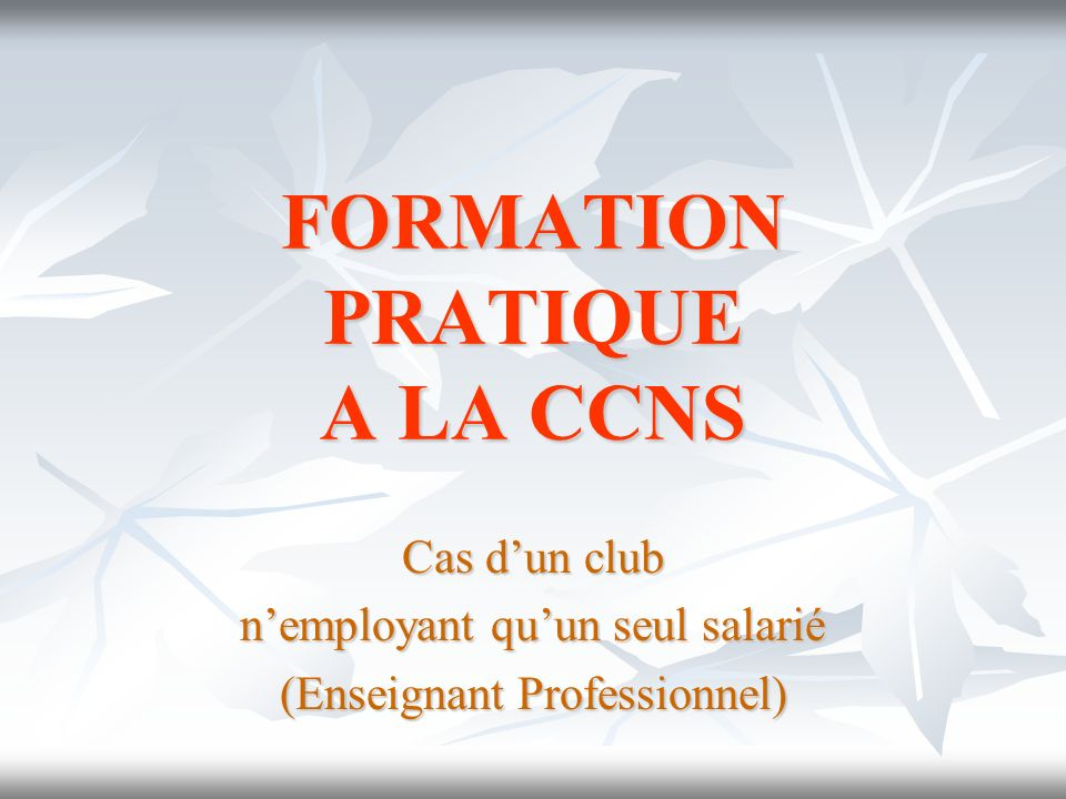 FORMATION PRATIQUE A LA CCNS Cas dun club nemployant quun seul salarié (Enseignant Professionnel)