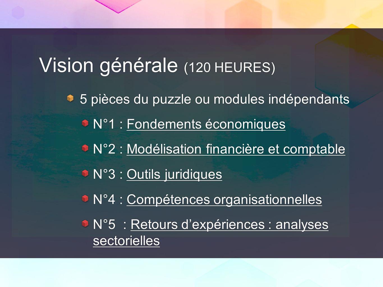 Vision générale (120 HEURES) 5 pièces du puzzle ou modules indépendants N°1 : Fondements économiques N°2 : Modélisation financière et comptable N°3 :