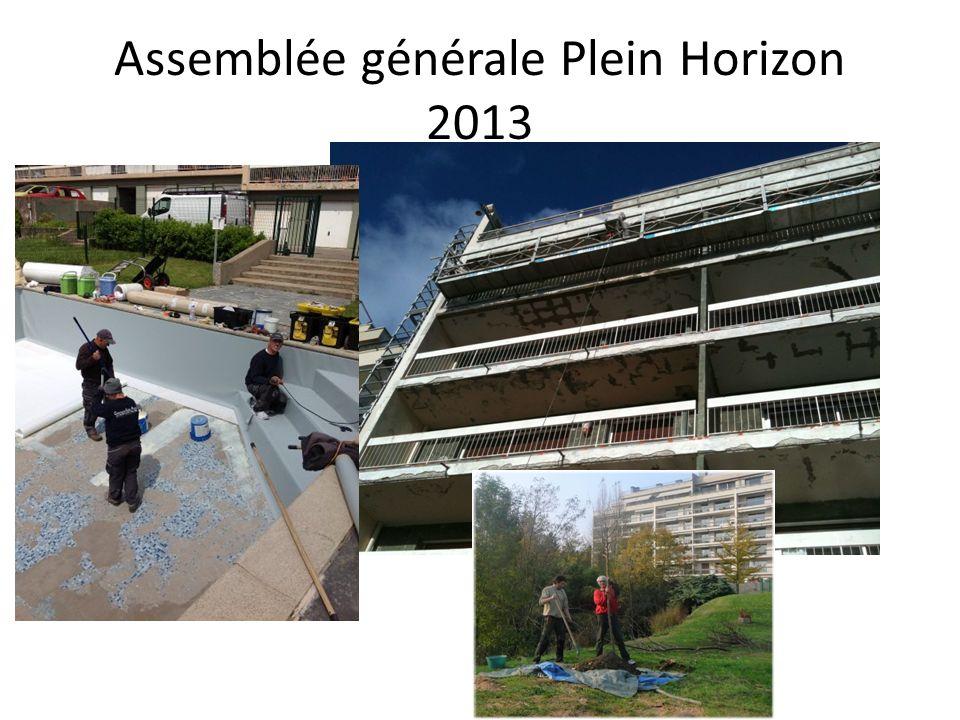 Assemblée générale Plein Horizon 2013
