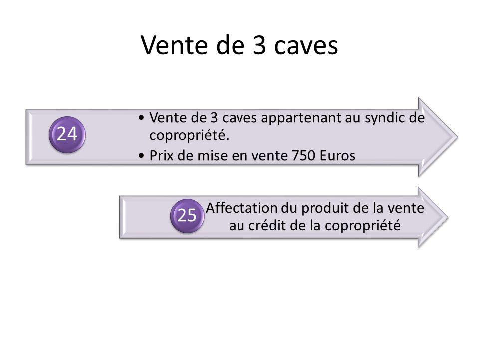 Vente de 3 caves appartenant au syndic de copropriété. Prix de mise en vente 750 Euros 24 Affectation du produit de la vente au crédit de la coproprié