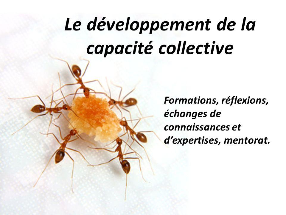 Le développement de la capacité collective Formations, réflexions, échanges de connaissances et dexpertises, mentorat.