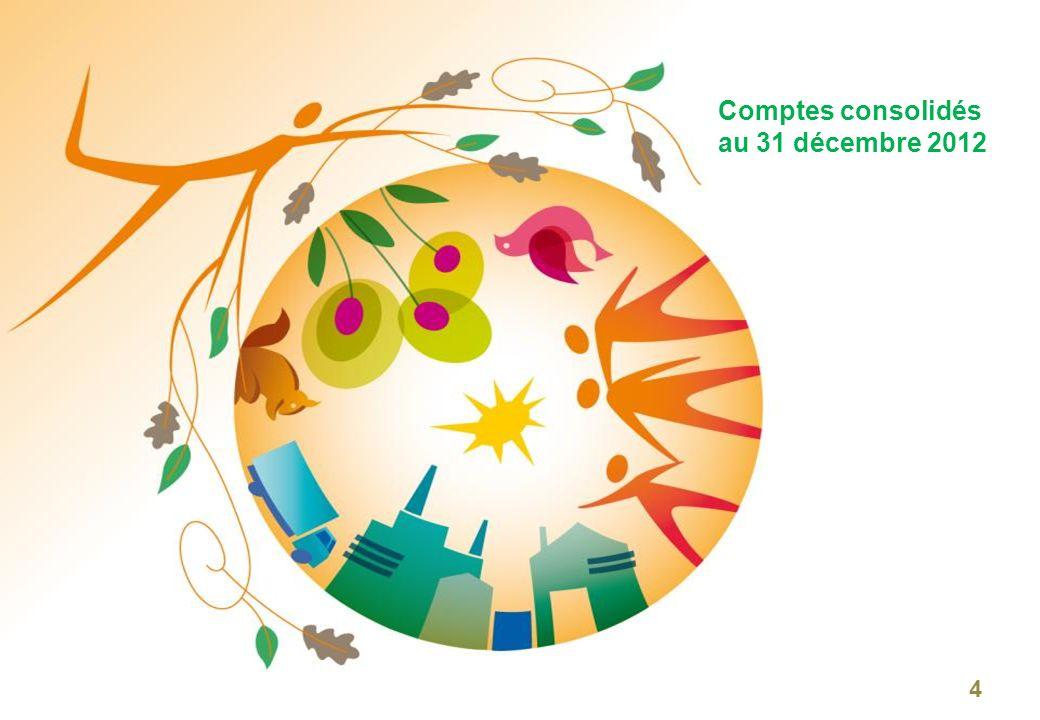 Résultats consolidés au 31 décembre 2012 25 Bon niveau dactivité des filières Évolution du chiffre daffaires par filière 31/03 M Filière DD : CA à 69,0 M vs.