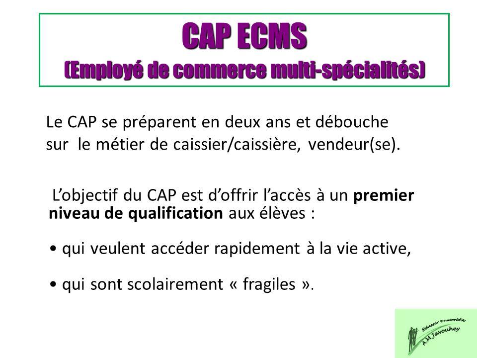 CAP ECMS (Employé de commerce multi-spécialités) Le CAP se préparent en deux ans et débouche sur le métier de caissier/caissière, vendeur(se). Lobject