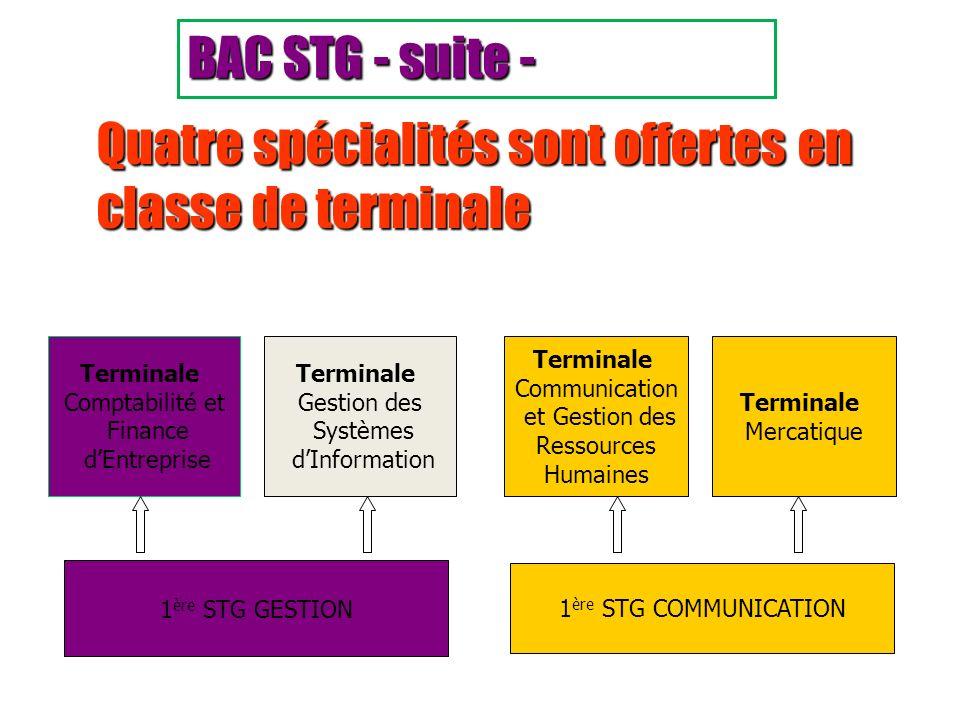 Quatre spécialités sont offertes en classe de terminale Terminale Comptabilité et Finance dEntreprise Terminale Gestion des Systèmes dInformation Term