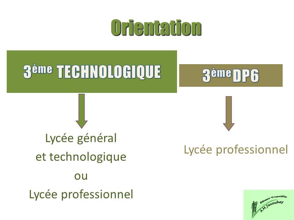 Lycée général et technologique ou Lycée professionnel Orientation