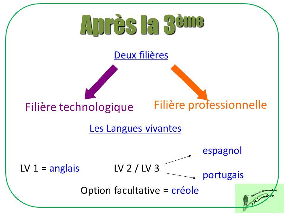 Filière professionnelle Deux filières Filière technologique LV 1 = anglais Les Langues vivantes LV 2 / LV 3 espagnol portugais Option facultative = cr