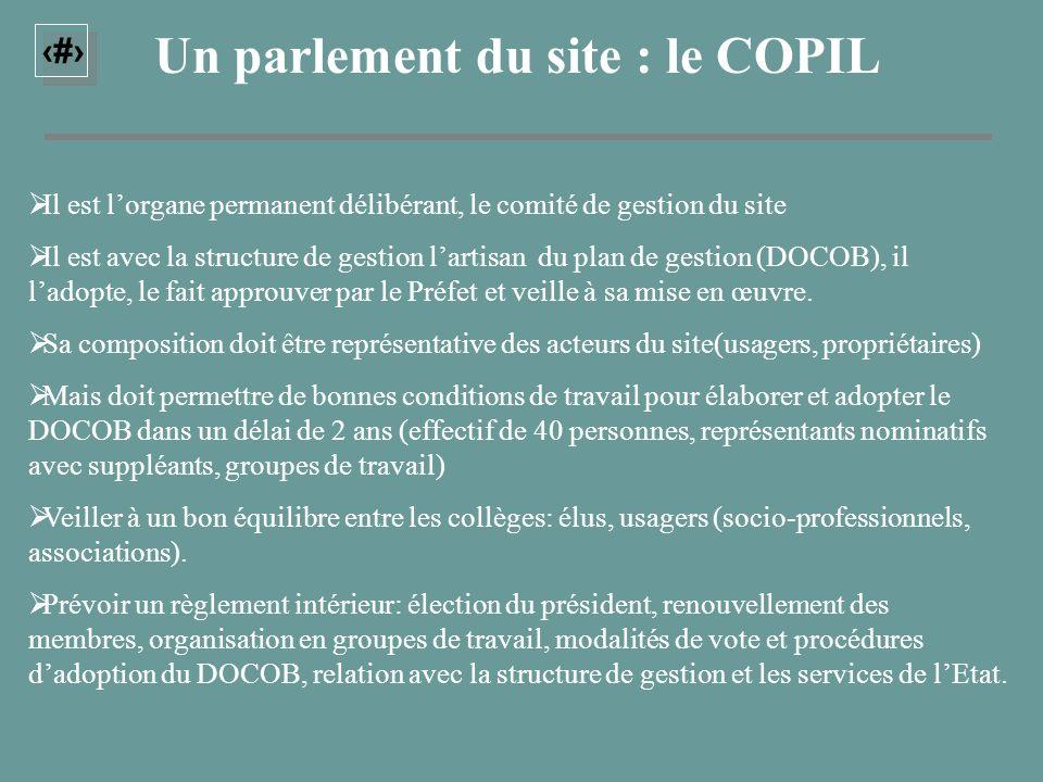 19 Un parlement du site : le COPIL Il est lorgane permanent délibérant, le comité de gestion du site Il est avec la structure de gestion lartisan du p