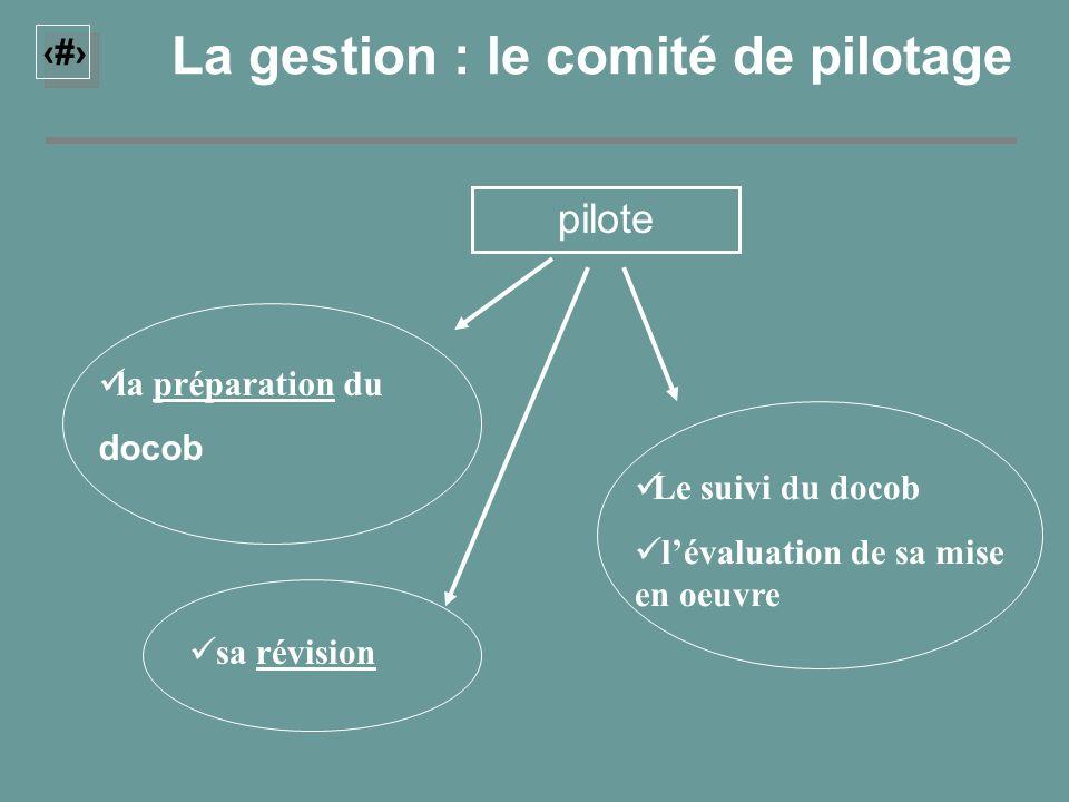 20 La gestion : le comité de pilotage pilote la préparation du docob sa révision Le suivi du docob lévaluation de sa mise en oeuvre