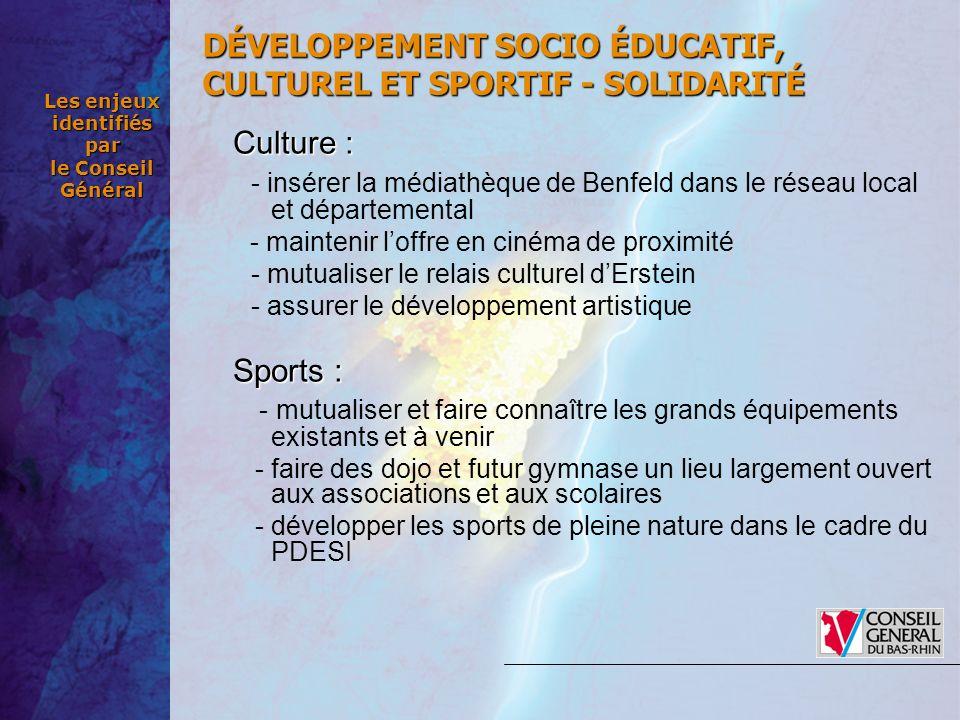 Les enjeux identifiés par le Conseil Général Culture: Culture : - insérer la médiathèque de Benfeld dans le réseau local et départemental - maintenir