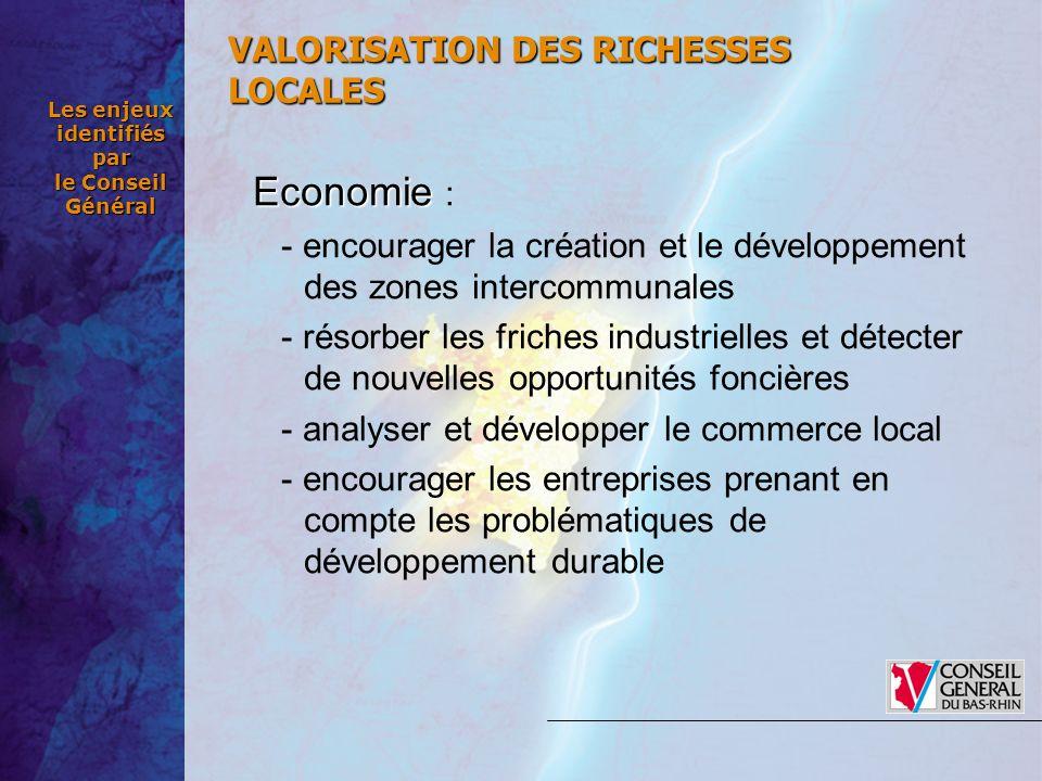 Les enjeux identifiés par le Conseil Général Economie Economie : - encourager la création et le développement des zones intercommunales - résorber les