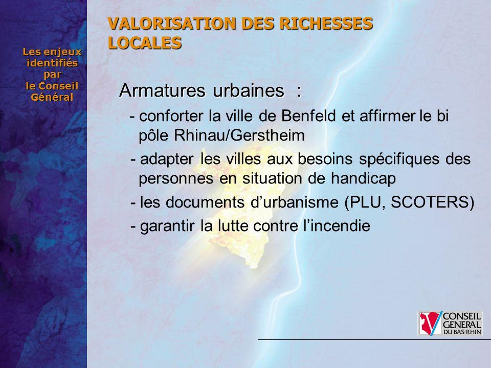 Les enjeux identifiés par le Conseil Général Armatures urbaines : - conforter la ville de Benfeld et affirmer le bi pôle Rhinau/Gerstheim - adapter le