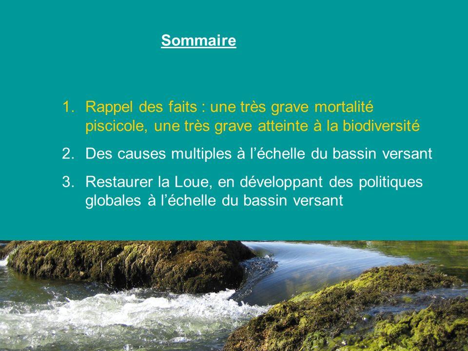 1.Rappel des faits : une très grave mortalité piscicole, une très grave atteinte à la biodiversité 2.Des causes multiples à léchelle du bassin versant
