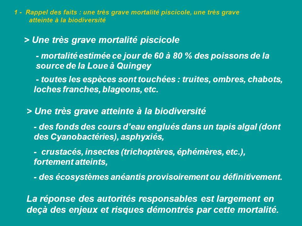 1 - Rappel des faits : une très grave mortalité piscicole, une très grave atteinte à la biodiversité > Des effets sur la qualité de leau - les Cyanobactéries : des organismes à lorigine de pollutions toxiques, difficiles à prévoir et contrôler, - mai 2010 : mort dun chevreuil (25 Kg) en amont de Lods, après son abreuvage : intoxication par des neurotoxines relarguées par les Cyanobactéries.