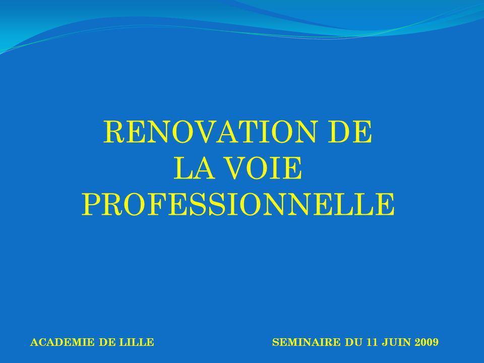 RENOVATION DE LA VOIE PROFESSIONNELLE ACADEMIE DE LILLESEMINAIRE DU 11 JUIN 2009