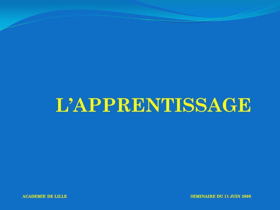 LAPPRENTISSAGE ACADEMIE DE LILLESEMINAIRE DU 11 JUIN 2009
