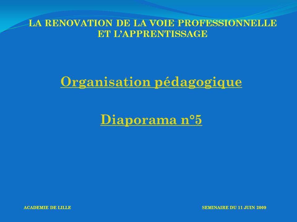 LA RENOVATION DE LA VOIE PROFESSIONNELLE ET LAPPRENTISSAGE Organisation pédagogique Diaporama n°5 ACADEMIE DE LILLESEMINAIRE DU 11 JUIN 2009