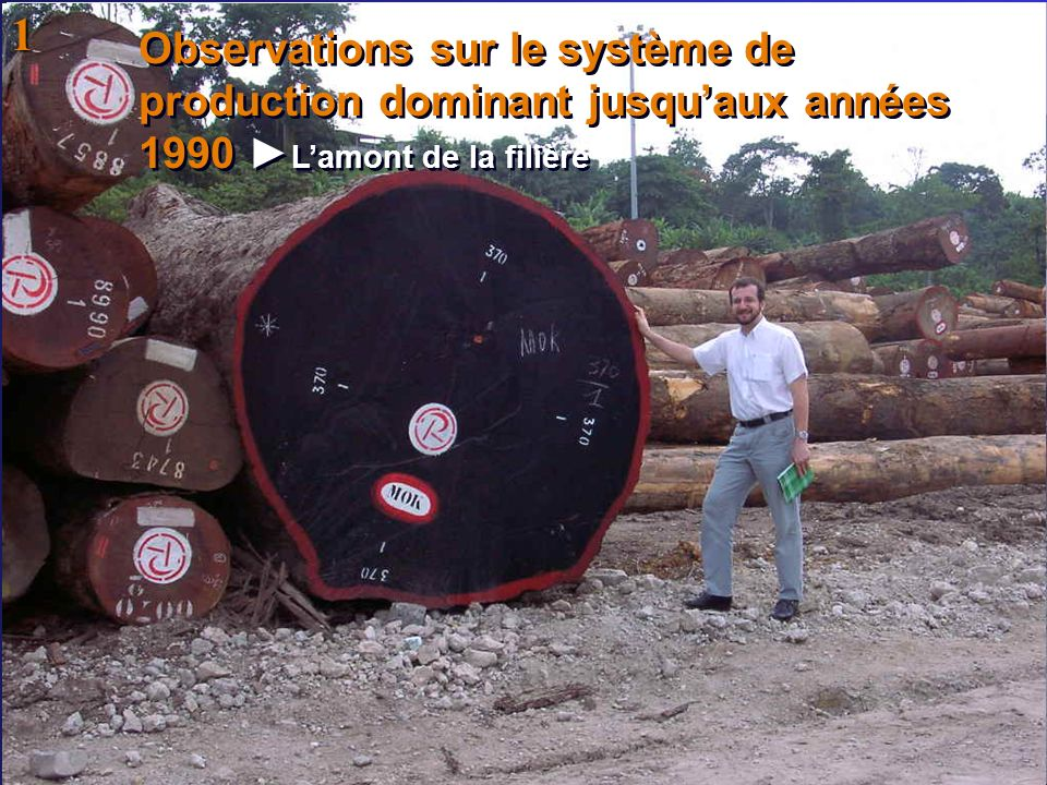 Observations sur le système de production dominant jusquaux années 1990 Lamont de la filière 1