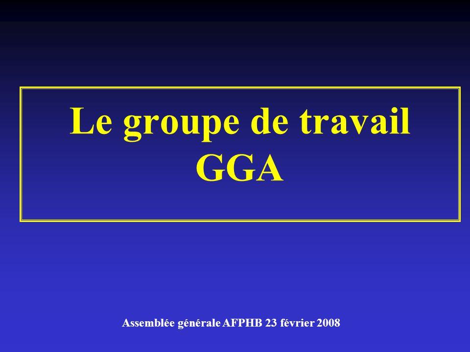 Le groupe de travail GGA Assemblée générale AFPHB 23 février 2008