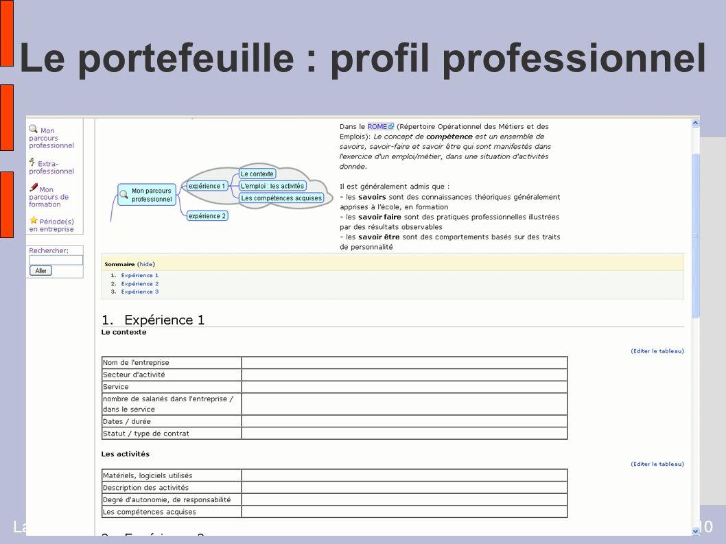 Laurence Charpentier - Université Vivaldi 200910 Le portefeuille : profil professionnel