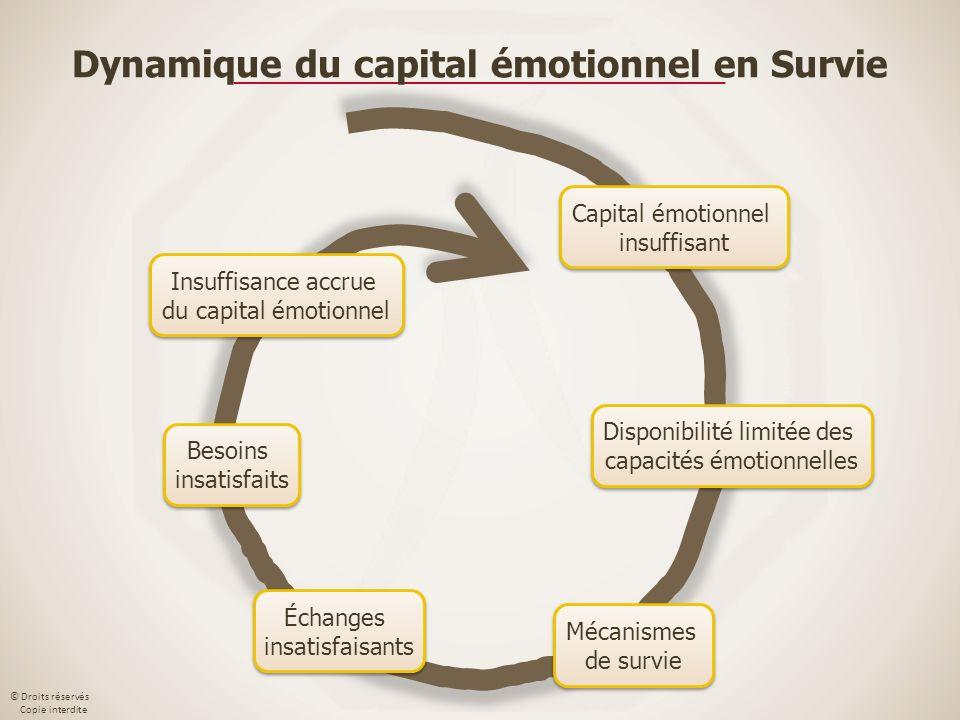 © Droits réservés Copie interdite Capital émotionnel insuffisant Capital émotionnel insuffisant Disponibilité limitée des capacités émotionnelles Disp