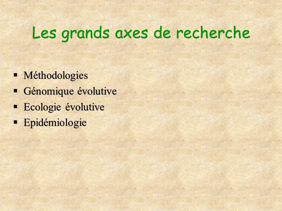 Les grands axes de recherche Méthodologies Génomique évolutive Ecologie évolutive Epidémiologie Méthodologies Génomique évolutive Ecologie évolutive E