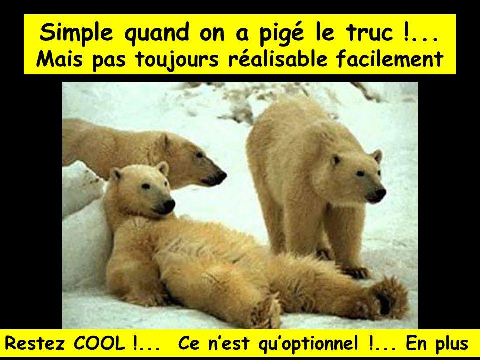 Simple quand on a pigé le truc !...Mais pas toujours réalisable facilement Restez COOL !...
